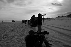 """Wildlife Photographers"" (Photography by Sharon Farrell) Tags: newjersey jersey jerseyshore ibsp islandbeachstatepark islandbeach islandbeachnorthernnaturalarea islandbeachstateparknewjersey barrierisland atlanticocean atlanticseaboard atlanticcoastline oceancounty oceancountynewjersey jerseyindecember photographers wildlifephotographers blackandwhite noiretblanc blackwhite bw monochrome silhouettes"