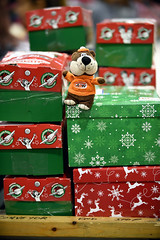 Shoebox Gifts (Poocher7) Tags: occ operationchristmaschild toybear teddybear awrootbeer awrootbear shoeboxes shoeboxgifts conveyer rollers cute sweet giving sharing love kindness nonprofitorganization internationalrelief guelph ontario canada processingcentre warehouse christmas