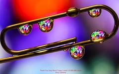 10 000 000 Thank You (YᗩSᗰIᘉᗴ HᗴᘉS +12 000 000 thx❀) Tags: 10000000 thankyou drop droplet trombone metal macro hensyasmine yasminehens water h2o canon supermacro