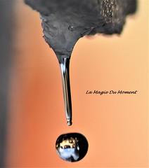 Goutte d'eau (La Magie Du Moment) Tags: eau goutte gouttes gouttesdeau larme perledeau perles nature neige nikon macro magique froid fonte fragilité reflet miroir lumière larmes transparant sculpture extérieur éphémère