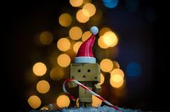 Christmas Bokeh (cclontz) Tags: christmas danboard danbo amazon bokeh lights focus nikon d7000