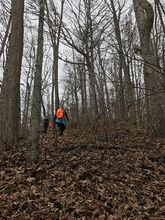 Stecoah Gap: Nov. 25, 2017
