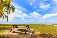 Invitation à la méditation (alain_did) Tags: plage guyane amazonia amazonie yalimapo soleil méditation littoral nuages mer cocotiers