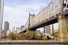 r_171114107_beat0075_a (Mitch Waxman) Tags: citywideferry eastrivershoreline newyorkcity newyorkharbor queensborobridge rooseveltisland newyork