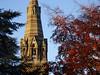 Through The Trees - Part Of The Tower of St.John the Evangelist Church, Park Street, Taunton (Balticson) Tags: taunton somerset stonework churchtower church stjohnschurchtaunton