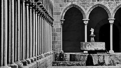 Pedralbes Monastery (gerard eder) Tags: world travel reise viajes europa europe españa spain spanien barcelona church iglesia gothic columnas colomns säulen monastery monasterio pedralbes nikon bw blackandwhite blackwhite sw schwarzweis blancoynegro monochrome