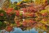 Chōgaku-ji on the Yamanobe no Michi in Nara-Ken, Japan. (KyotoDreamTrips) Tags: buddhism chōgakuji japan kōbōdaishi miwasomen momijigari nara yamanobenomichi autumn autumnphotography travel 山辺の道 弘法大師 紅葉狩 長岳寺