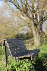Bench (Pat's_photos) Tags: cambridge bench hbm