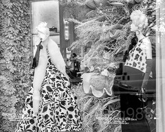 "2017 Bergdorf Goodman ""To New York with Love"" Holiday Window Display, Midtown Manhattan, New York City (jag9889) Tags: 2017 2017holidaywindowdisplay 20171201 5thavenue bw bg bergdorfgoodman blackandwhite christmas clothing departmentstore display dress fashion fifthavenue flagship holiday manhattan mannequin midtown monochrome ny nyc newyork newyorkcity outdoor reflection retail storewindow text tree usa unitedstates unitedstatesofamerica window jag9889"