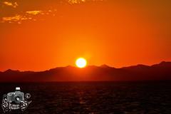 Sunset Over Sinai Desert (ShaunMYeo) Tags: egypt egipte egjipt مصر եգիպտոս misir egipto егіпет মিশর egipat египет 埃及 egypten egypte egiptujo egiptus ehipto egypti exipto ეგვიპტეში ägypten αίγυπτοσ ઇજીપ્ટ misira מצרים मिस्र egyiptom egyptaland mesir egittoエジプト ಈಜಿಪ್ಟ್ мысыр ប្រទេសអេហ្ស៊ីប 이집트 ອີຢິບ ēģipte egiptas ejipta ഈജിപ്ത് eġittu ihipa इजिप्त मिश्र egipt egito ਮਿਸਰ египат egepeta ඊජිප්තුවේ masar misri миср எகிப்து ఈజిప్ట్ อียิปต์ mısır єгипет misr egipti redsea