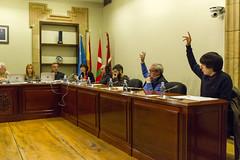 Parte de la opisición vota en contra de las ordenanzas -no se ve la bancada de EH Bildu-