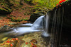 charm of waterfall (Plamen Troshev) Tags: autumn october river bulgaria centralbalkan new nature explore landscape leafs waterfall forest branch tree trekking