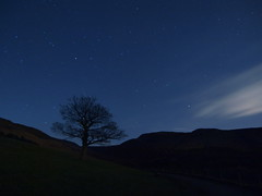 Orion rising over the lonely tree at Dove Stone Reservoir. 115 frames x 60 seconds combined with ffmpeg. (kyliepics) Tags: olympus e520 evolt520 olympuszuikodigital1122mmf2835 darktable video