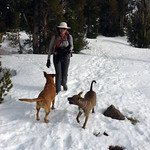 Ingrid with the snow dogs thumbnail