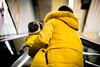 """Save me!"" (modesrodriguez) Tags: pug dog animal street yellow streetphotography color barcelona 50mmf12 metro underground"