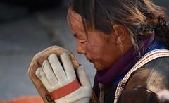 Devotion, Tibet 2017 (reurinkjan) Tags: tibetབོད བོད་ལྗོངས། 2017 ༢༠༡༧་ ©janreurink tibetanplateauབོད་མཐོ་སྒང་bötogang tibetautonomousregion tar ütsang lhasa jokhang lhadentsuglakhang jowokhang ཇོ་ཁང་ fullbodyprostration faceགདོང་པ་dongpa གདོང༌dong གདོང་ཁdongkha portrait portraiture facecolorགདོང་མདོགdongdok portrayal picture photograph likeness womanསྐྱེས་དམན་kyemen བུད་མེདbümé beautifulwomanབུད་མེད་མཆོགbümemchok prettywomanབུད་མེད་མཆོར་མོbüméchormo ladyfemalewomanམོmo མོ་སྐྱེསmokyé femalesམོ་རྣམསmonam pilgrimགནས་བསྐོར་བ་nekorwaསྐོར་མིkormi pilgrimageགནས་བསྐོརnekor onpilgrimageགནས་སྐོར་པnekorpa greatsacredplaceགནས་ཆེནnechen