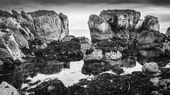 Rock Pool (RattySV) Tags: olympus olympuspenep5 olympusuk mzuiko1250mm microfourthirds micro43 mirrorless coantrim countyantrim compactsystemcamera bw seascape rockpool