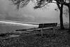 "Park Bench ""In Memory of.."" ©2017 Steven Karp (kartofish) Tags: fog morning monochrome blackandwhite tylerstatepark neshaminycreek parkbench fuji fujifilm xt1 landscape buckscounty pennsylvania"