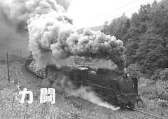 kemuri022 (railbus asano) Tags: steamlocomotives jnr d51 railway smoke