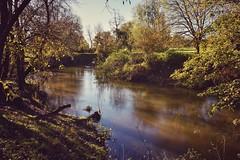 Riverside walk (Nige H (Thanks for 11m views)) Tags: nature landscape river riveravon wiltshire lacock autumn riversidewalk england countryside