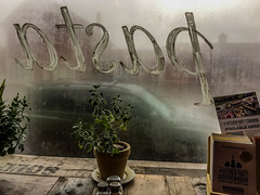Noodle_Guy-2_MaxHDR (old_hippy1948) Tags: window steamy plants cookbooks