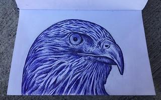 11/30/17. Sketchbook, ballpoint pen