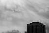 life is fleeting I (Brinkervelt.) Tags: chicago bird clouds light sunlight beam bw blackandwhite blackwhite monochrome noiretblanc