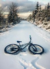 first snow (Hagbard_) Tags: snow snowbike fatbike winter winterland schnee bike fahrrad velo mtb mountainbike outdoor outside nature landscape
