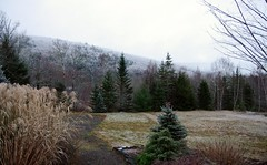 December 2017 (kimshand) Tags: december 2017 winter winterbeauty mountains cobequidmountain wentworth ns novascotia trees hills valley wentworthvalley fog frost frosty