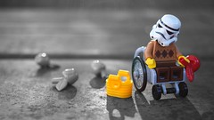 That's an apple (RagingPhotography) Tags: lego star wars imperial galactic empire stormtrooper storm trooper wheelchair wheel chair bound old outside outdoor shot photo apple basket apples nature bench interesting picking ragingphotography
