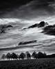 Closing Ranks and expecting Winter... (Ody on the mount) Tags: anlässe bäume em5ii fototour himmel hochformat landschaft mzuiko4518 omd olympus pflanzen schwäbischealb wolken bw clouds monochrome sw tree sanktjohann badenwürttemberg deutschland de