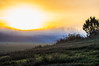 powerfull sun (Mange J) Tags: europe grums k3ii magnusjakobsson pentax sverige sweden tamronspaf90mmf28 värmland beauty blue clear field fog forrest green mist morning nature pentaxart sky sun sunrise tree wood värmlandslän se