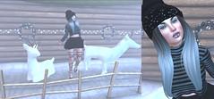 Post #1910 (şąşɧ =^^=) Tags: snow winter secondlife fashion blog bento catwa glitter makeup mesh top skirt boots snowflake deer garland hair hat beanie christmas fridaythecatenth fashionbloggoth emo punk