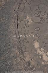 Qattafi Mesa 4 (Maitland's Fort); Qataffi Pendant 4 (APAAME) Tags: megaj2958 aerialarchaeology aerialphotography middleeast airphoto archaeology ancienthistory