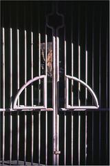 Gate / Kapu (Balázs Fodor) Tags: velvia f80