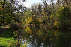 Reflections (Millie Cruz) Tags: reflections trees autumn fall magical water sky foliage orange colors landscape trail vegetation plants canal tranquility