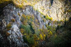 Bodetal Harz Canyon (johannesotte84) Tags: schlucht canyon bode tal harz deutschland germany otte wandern hiking natur nature europe europa herbst landscape 35mm offen blende mittel gebirge