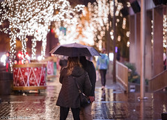 Romantic walk in the Rain (Endless Reflection Photography) Tags: bellevue bellevuewashington downtownbellevue bellevuedowntown bellevuemagicseason snowflakelane bellevuecollection bellevuerain bellevuestreetphotography bellevuehistory bellevuesquaremall bellevuesquare bellevueways lincolnsquareexpansion kemperdevelopment xmas christmasinbellevue endlessreflectionphotography ereflectionphotos cmerchant1 romanticbellevue visitbellevue seattleseastside bellevuephotographer seattlephotographer bellevueful snowflakelane2017 seattlerain