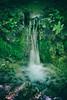 Fenomenale (mattiafarini) Tags: cascata flikr pic photo photography foto natura nature green fujifilm
