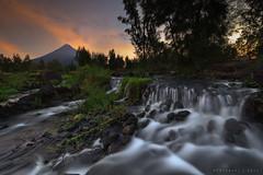 IMG_4112 (mykel7873) Tags: legazpi bicol albay camalig quitinday sumlang lake landscape nature sunrise sunset long exposure philippines mayon volcano flowers