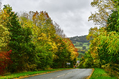 Photo of Round Wales Walk 91 (Offa's Dyke) - Autumn Road