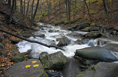 Smokey Hollow (claudiu_dobre) Tags: smokey hollow waterdown hamilton ontario bruce hiking trail grindstone creek landscape nature canada ca