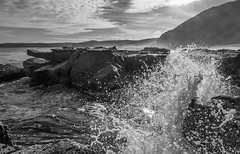 Pacific's caress (OzzRod) Tags: pentax k1 hdpentaxdfa1530mmf28 monochrome blackandwhite seascape coast shoreline swell wave surge swash splash rocks intothesun merewether