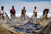 Varkala (Valdas Photo Trip) Tags: india kerala varkala fishing travelphotography travel