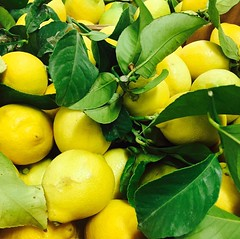 Citron feuille, Corse