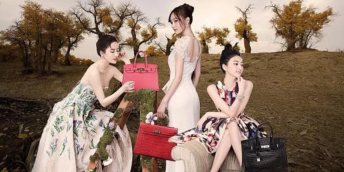 劉亦菲 画像2