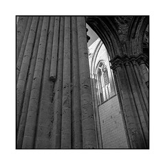 arches 1 • saint wandrille, normandy • 2016 (lem's) Tags: arches voutes abbaye abbey tons tones gothic ruin ruine saint wandrille normandy normandie rolleiflex t