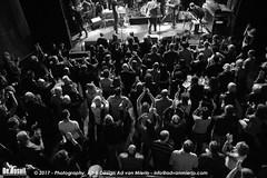 2017 Bosuil-Het publiek bij Sweetkiss Momma en Danny Bryant 13-ZW
