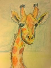 Crayon giraffe (Howard TJ) Tags: crayon drawing giraffe