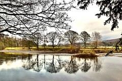 On reflection...... (Amanda_Woo) Tags: riverlune kirkbylonsdale countryside river reflections trees